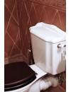 WC monobloc Balasani