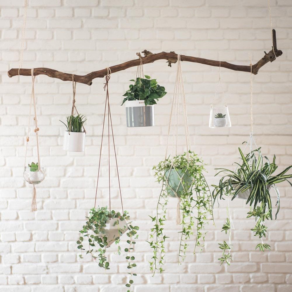 Une salle de bain joliment zen avec des plantes