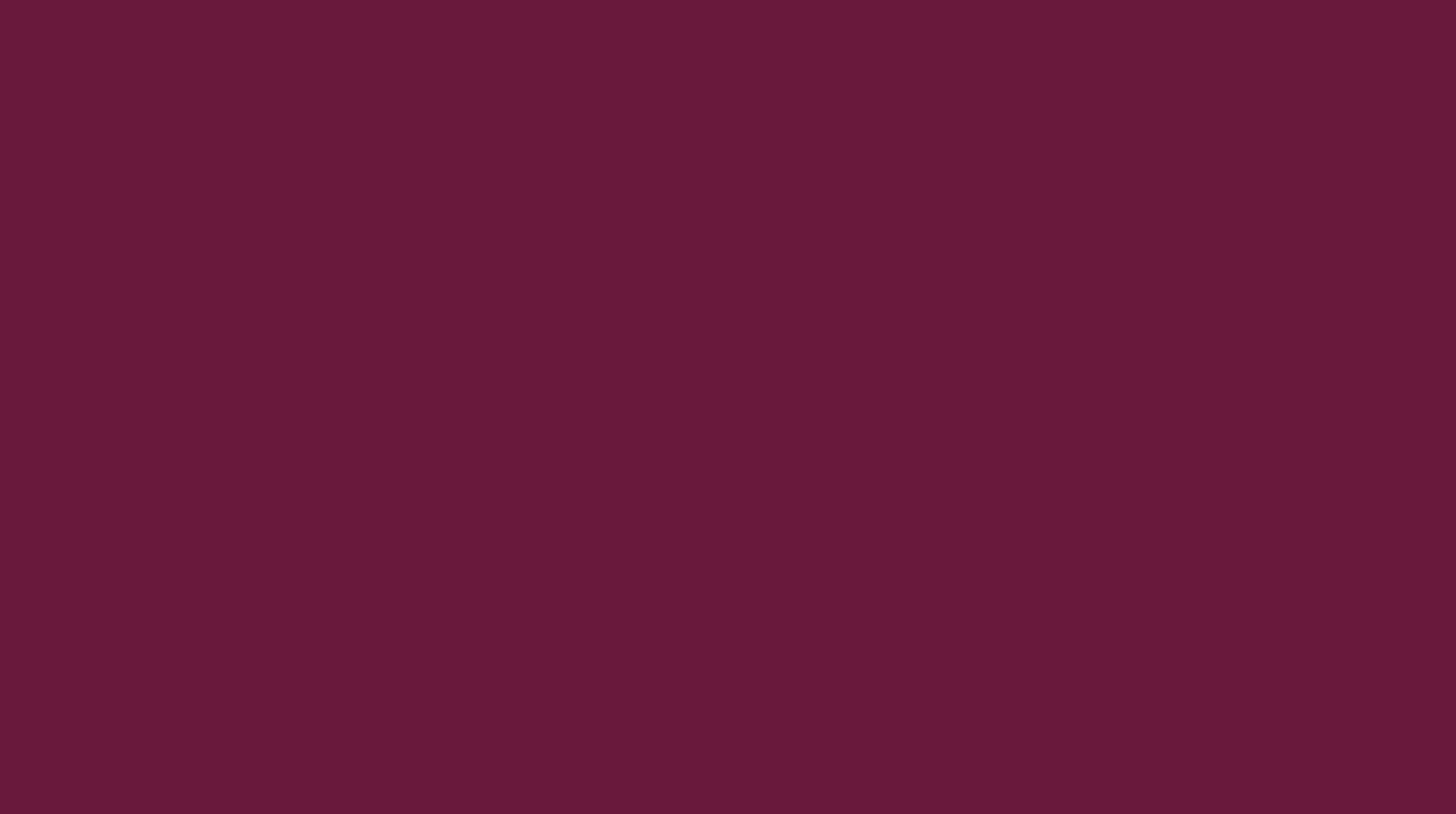 RAL 4004 Bordeaux