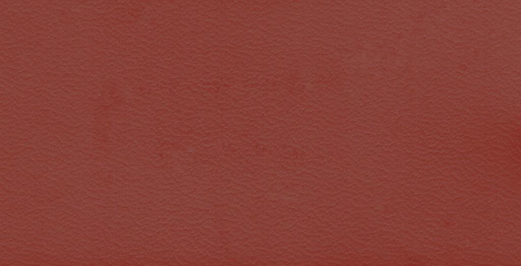 K09 cuir Bordeaux